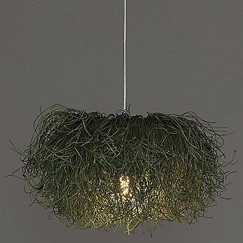 Green / illuminated