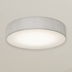 Daria LED Flush Mount Ceiling Light