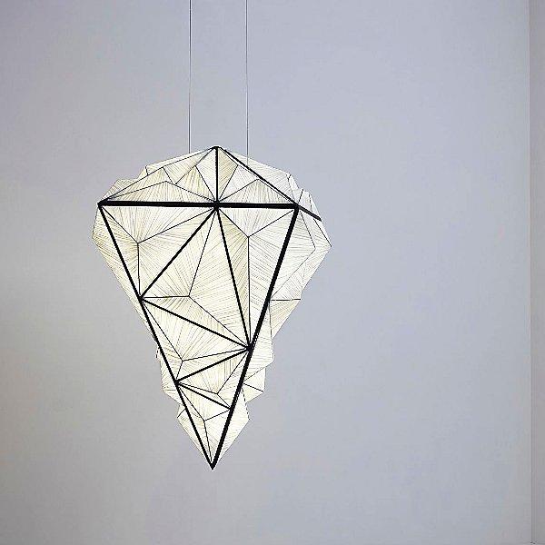 Zooid Pendant Light