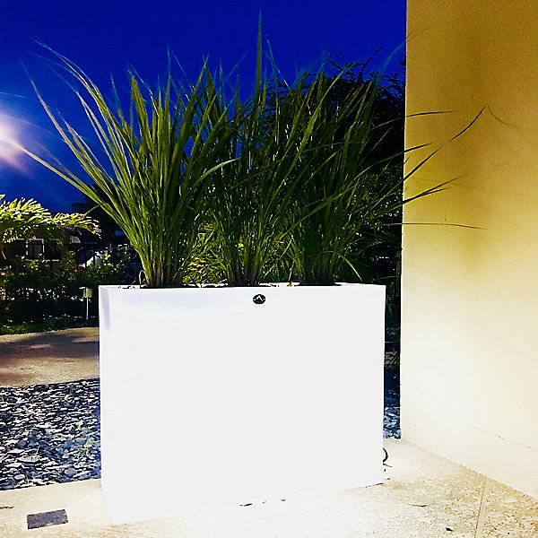 Aix Longa LED Planter