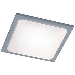 Trave Outdoor LED Flush Mount Ceiling Light