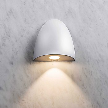 Orpheus LED Downlight Wall Sconce