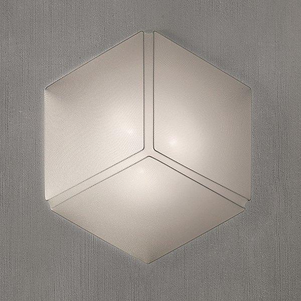 Necky Wall Light