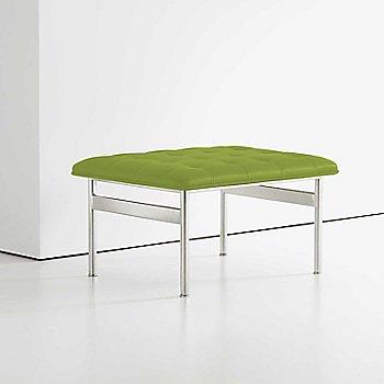 Focus: Sprout color