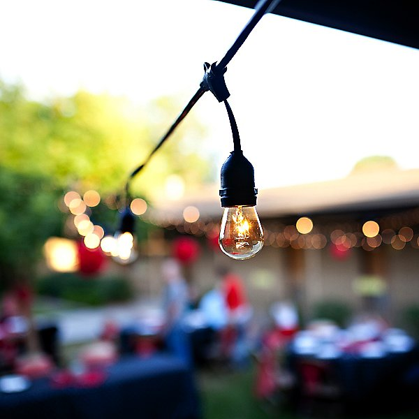 String Lights with S-Shape Lamps