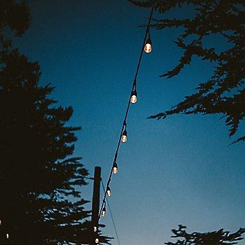 Black, illuminated