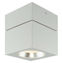 Surface Mount Square Ceiling Light