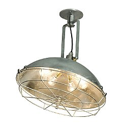 Cargo Cluster Wall or Ceiling Light