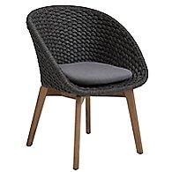 Peacock Chair With Teak Legs