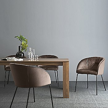 Rosie Soft Armchair with New Smart Extending Dining Table