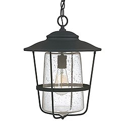 Creekside Outdoor Pendant by Capital (Black)-OPEN BOX RETURN