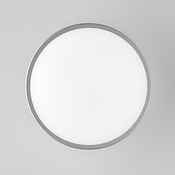 Jacky Wall or Ceiling Light