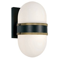 Capsule Outdoor Wall Sconce