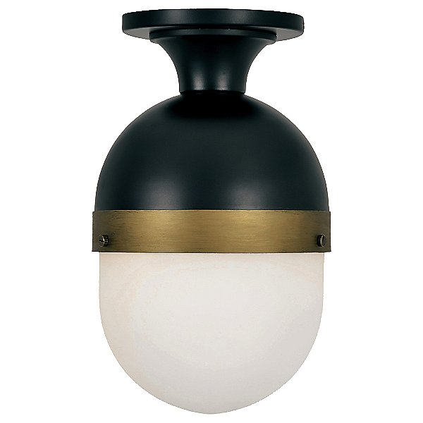 Capsule Outdoor Semi-Flush Mount Ceiling Light