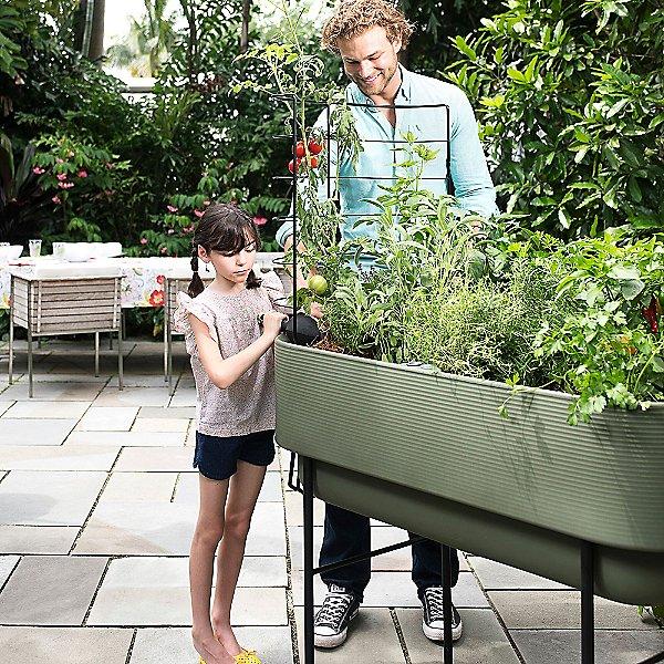 Trellis for Nest Raised Planter