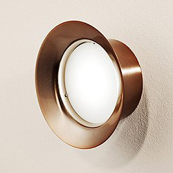 T-3410L Maine Small LED Ceiling Wall Light