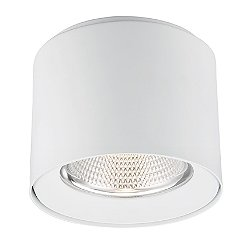 Trieste LED Flush Mount Ceiling Light