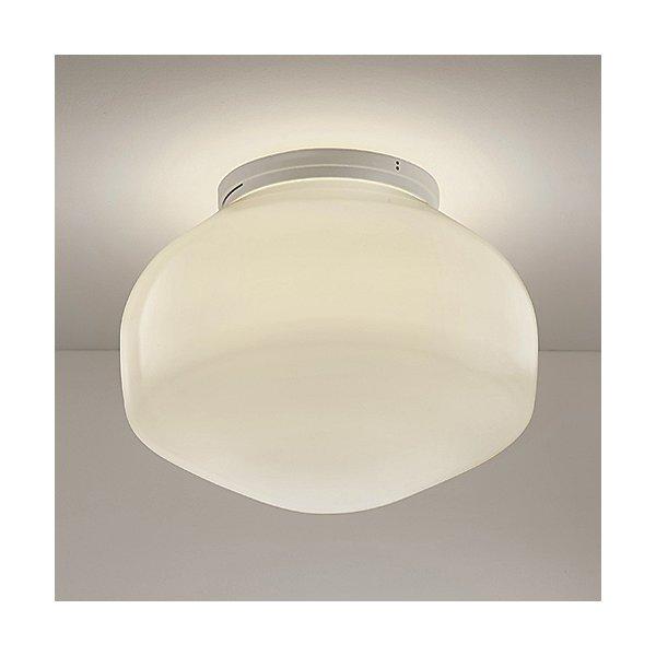 Aerostat Wall/Ceiling Light