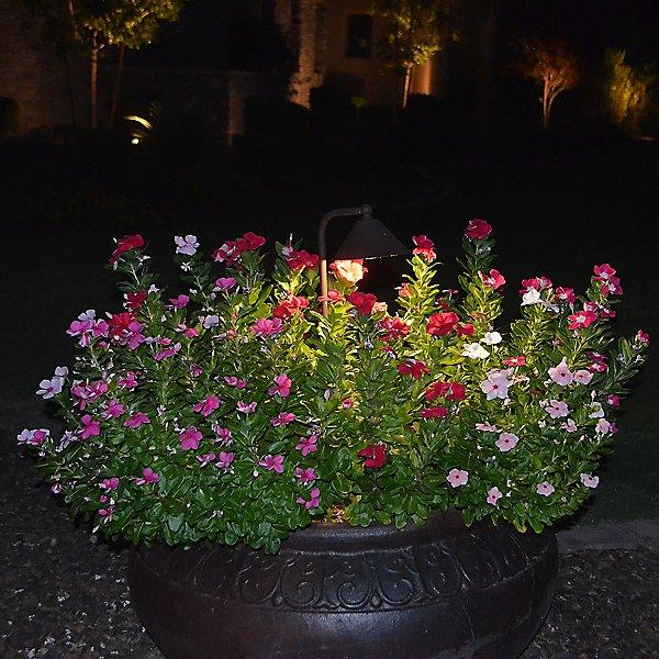 PL19 Outdoor LED Path Light