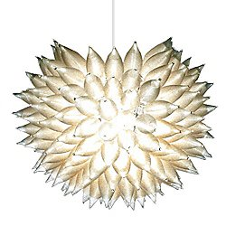 Silver Lining Pendant Light