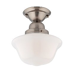 Edison 9 Inch Ceiling Light