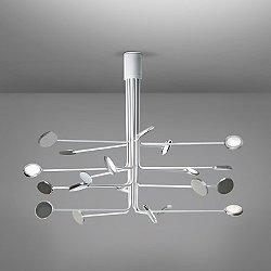 Arbor 20 Ceiling LED Light