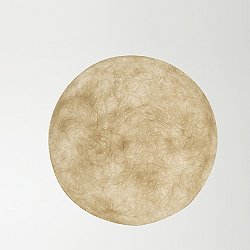 A Moon Out Outdoor Wall Light