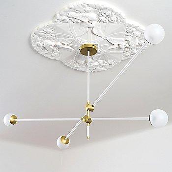 Polished Brass Canopy/Accent Finish / Powder Coated White Finish