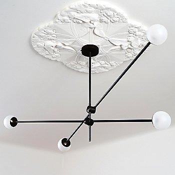 Polished Dark Bronze Canopy/Accent Finish / Powder Coated Black Finish