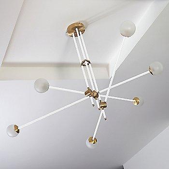 Brushed Brass Canopy/Accent Finish / Powder Coated White Finish