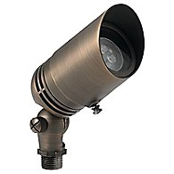 Centennial Brass Adjustable Spotlight