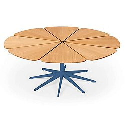Petal Collection Coffee Table