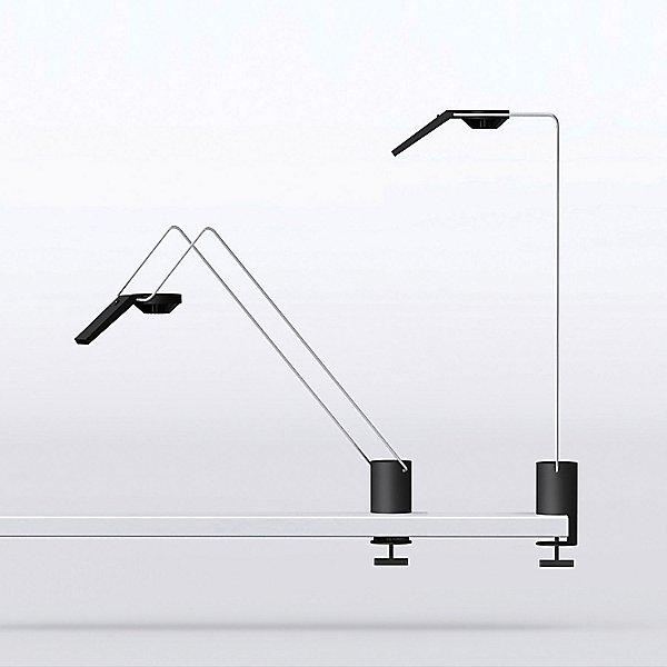 Sparrow LED Desktop Light