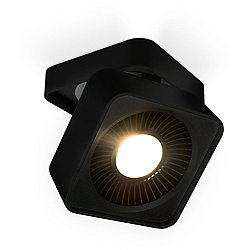 LED Directional Wall / Ceiling Light
