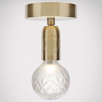 Frosted / Brushed Brass finish / illuminate