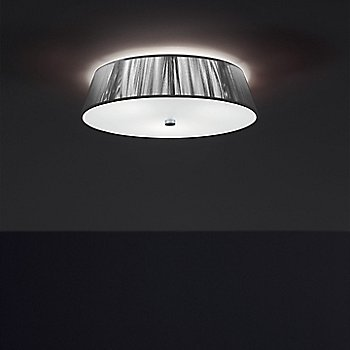 Silver / illuminated