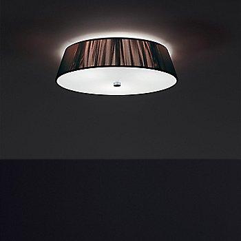 Mocha / illuminated
