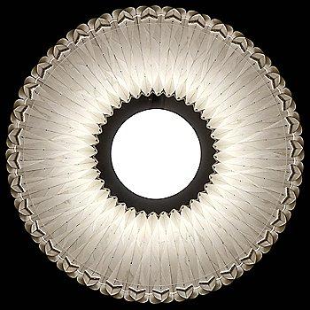 Ivory White shade / Bottom view