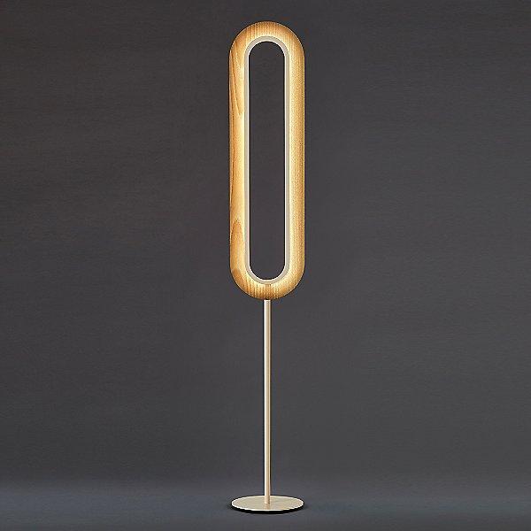 Lens Super Oval LED Floor Lamp