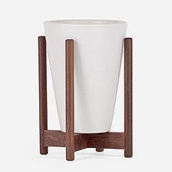 Case Study Desktop Funnel with Wood Stand