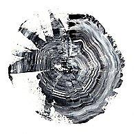 Tree Ring Abstract II