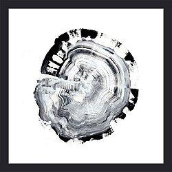 Tree Ring Abstract III