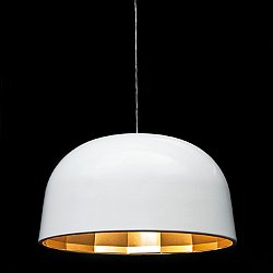 Empty Pendant Light