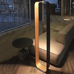 Contour Floor Lamp