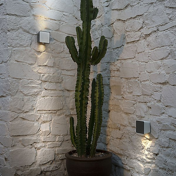 Lab Outdoor Wall Sconce