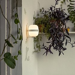 Wally Wall Light