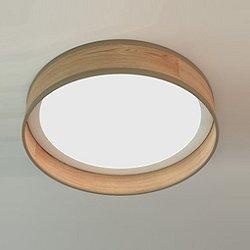 Luca LED Flush Mount Ceiling Light