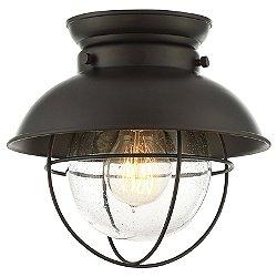 Robert Flush Mount Ceiling Light