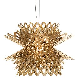 Desert Rose Pendant Light