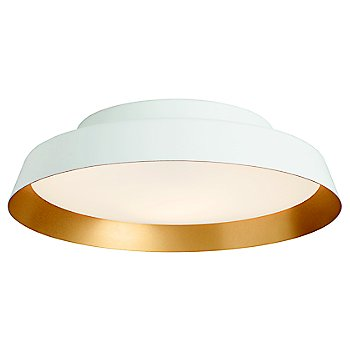 White with Gold Exterior color / Interior color, illuminated